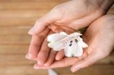 신생아 이상증세 : 신생아 황달&영아산통